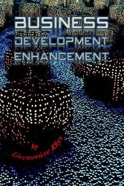 Business Development Enhancement